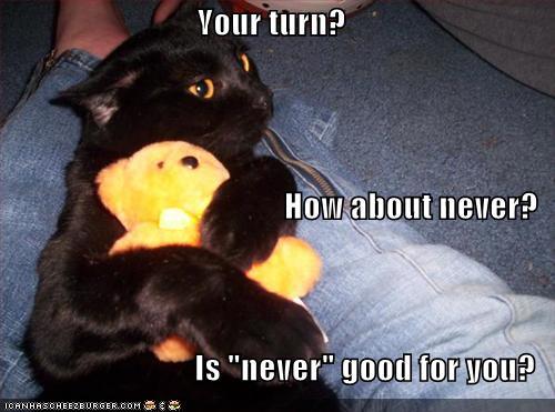 attitude-cat.jpg