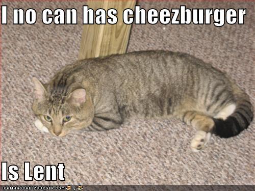 lent-cat.jpg