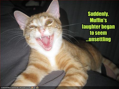 unsettled-muffin1